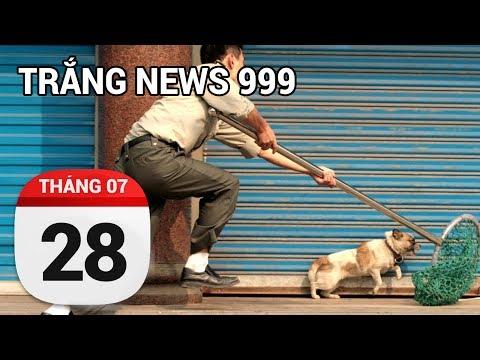 Trộm chó có tội không, hay lỗi thuộc về người ăn thịt chó...| TRẮNG NEWS 999 | 28/07/2017