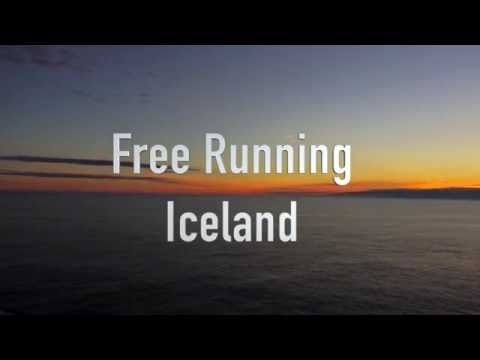 Free running Iceland - Only a hay bale - Michiel Kint