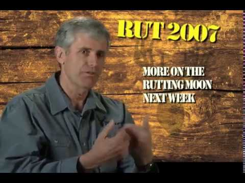 How To Hunt The Moon Phases Of The Whitetail Rut