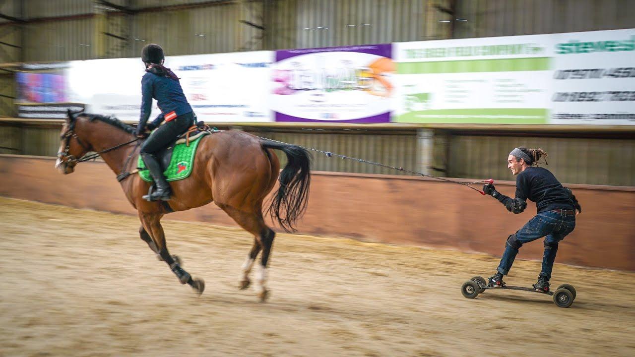 HORSE BOARDING - BEST SPORT IN THE WORLD!