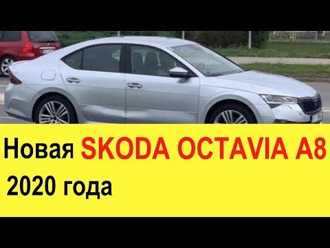 Новая Skoda Octavia A8 (2019-2020 года): Elantra, Cerato и Corolla больше не нужны