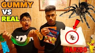 Giant Gummy Worm Candy Challenge VS Super Gross