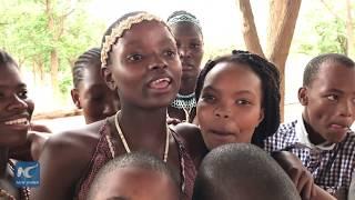 Botswana energetical traditional dance