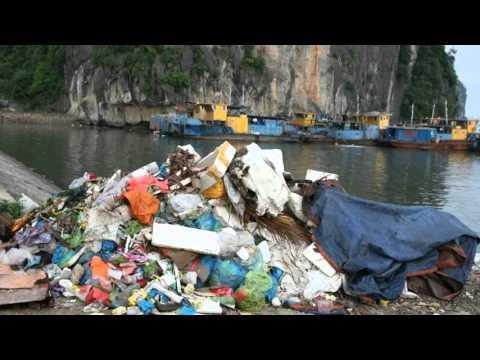 Thực trạng ô nhiễm môi trường Việt Nam