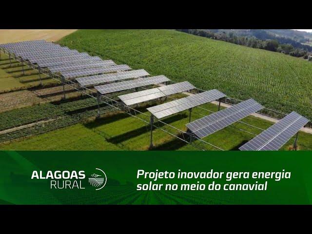Projeto inovador gera energia solar no meio do canavial