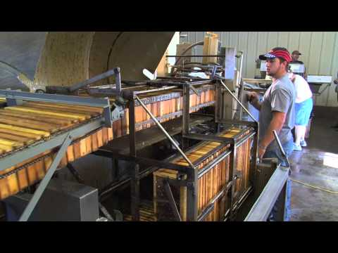 Sue Bee Honey Harvest Video