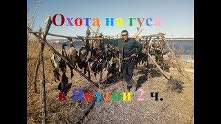 Охота на гуся 2017 в Якутии часть 2