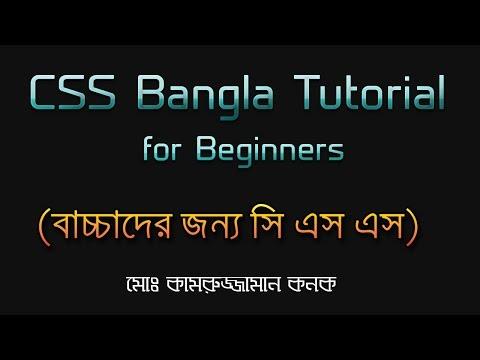 CSS Bangla Tutorial for Beginners