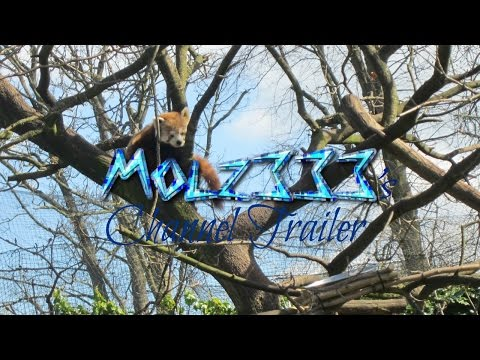 My Channel trailer | Youtube | Molz 333