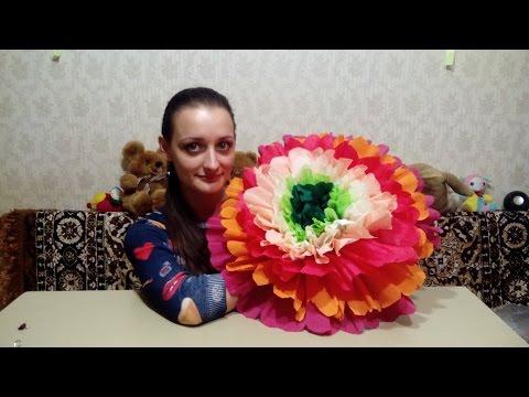 Бумажные цветы своими руками калы из бумаги