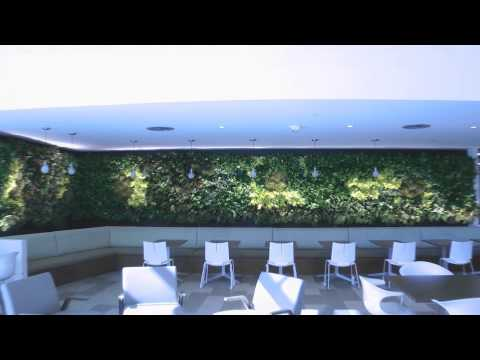 Go Daddy Living Green Walls Plant Solutions