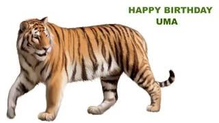 Uma  Animals & Animales - Happy Birthday