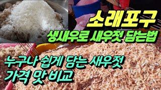 소래포구 생새우로 새우젓 담는법 누구나 쉽게 담는 새우…