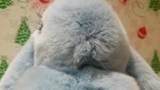 Моя Сьюки! Обзор на брелок -кролик из натурального меха ????????