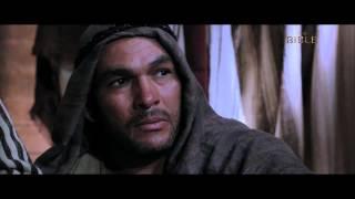 The Bible Series - Paul