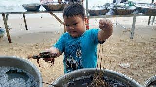 Trò Chơi Đi Tắm Biển Mua Con Ghẹ  ❤ PinPin TV ❤  Đồ Chơi Bé Pin