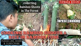 #Nonoil. Collectin Bamboo Shoots&Cooking in Bamboo tube/Rice Cooking in Bamboo tube / TIPRASA RECIPE