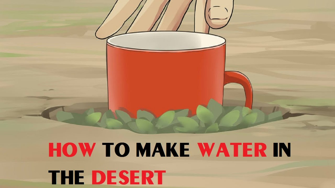 how to purify water on a deserted island