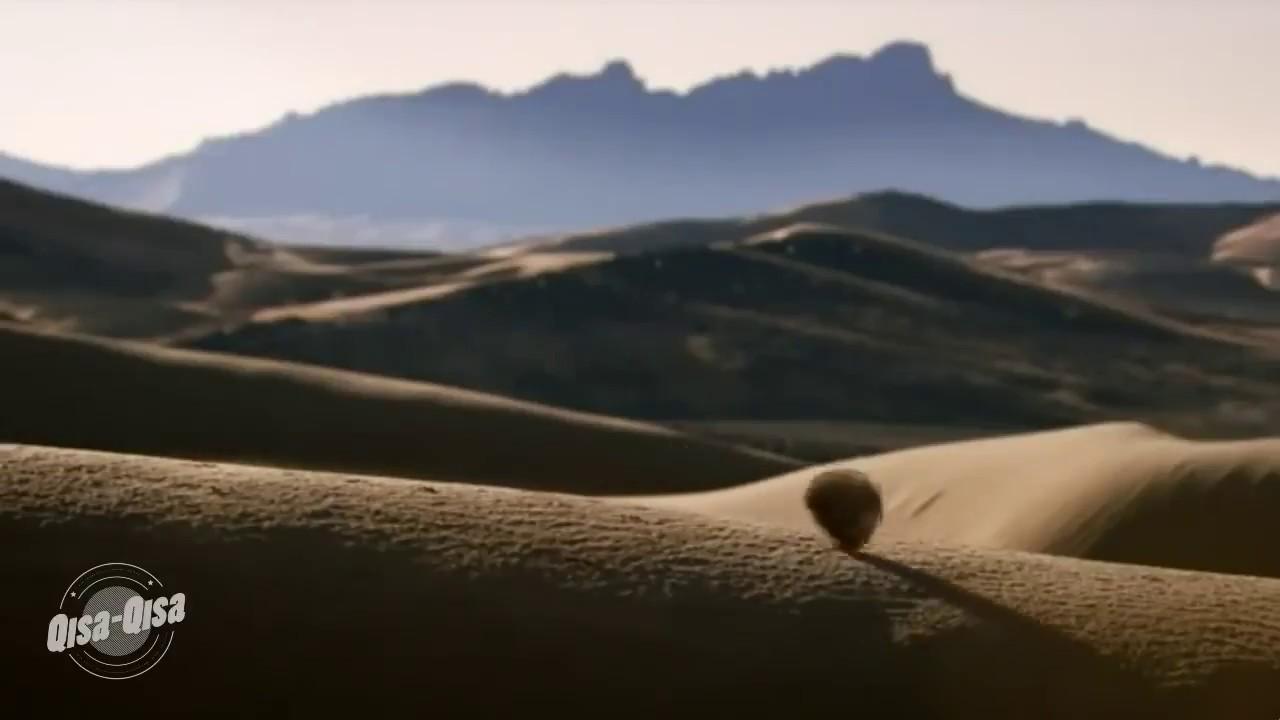 Картинки анимации пустыня, картинки рождением племянника