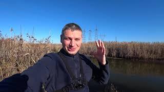 рыбалка на КУБАНИ в канале ловля мелкого карася 29 ноября 2020 ловля на поплавок маховые удочки