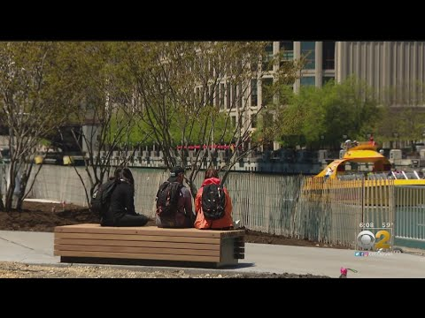Lance Houston - Chicago's New and Improved Riverwalk is Now Open!