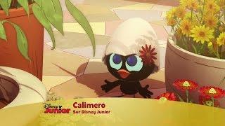 Calimero, nouvelle série - Le petit poussin au grand coeur !