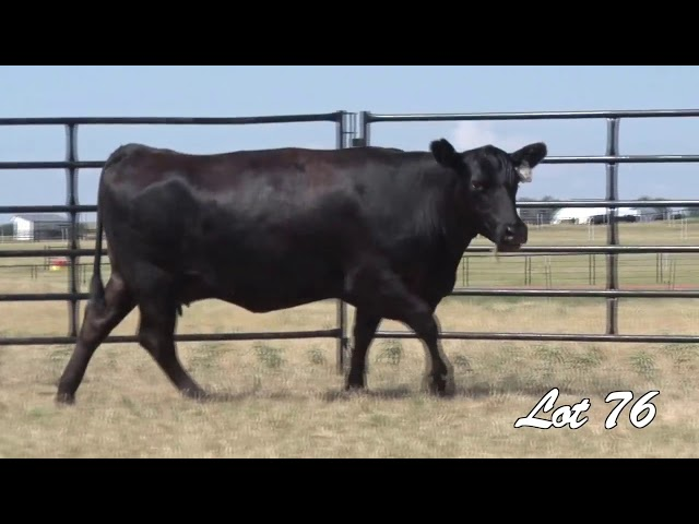 Pollard Farms Lot 76