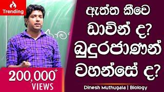 dinesh-muthugala-3