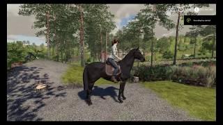 Farming simulator 19 - Horse Arena