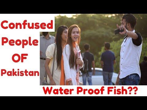 Water Proof Fish?? Confused people of Pakistan  UOL  Haris Awan