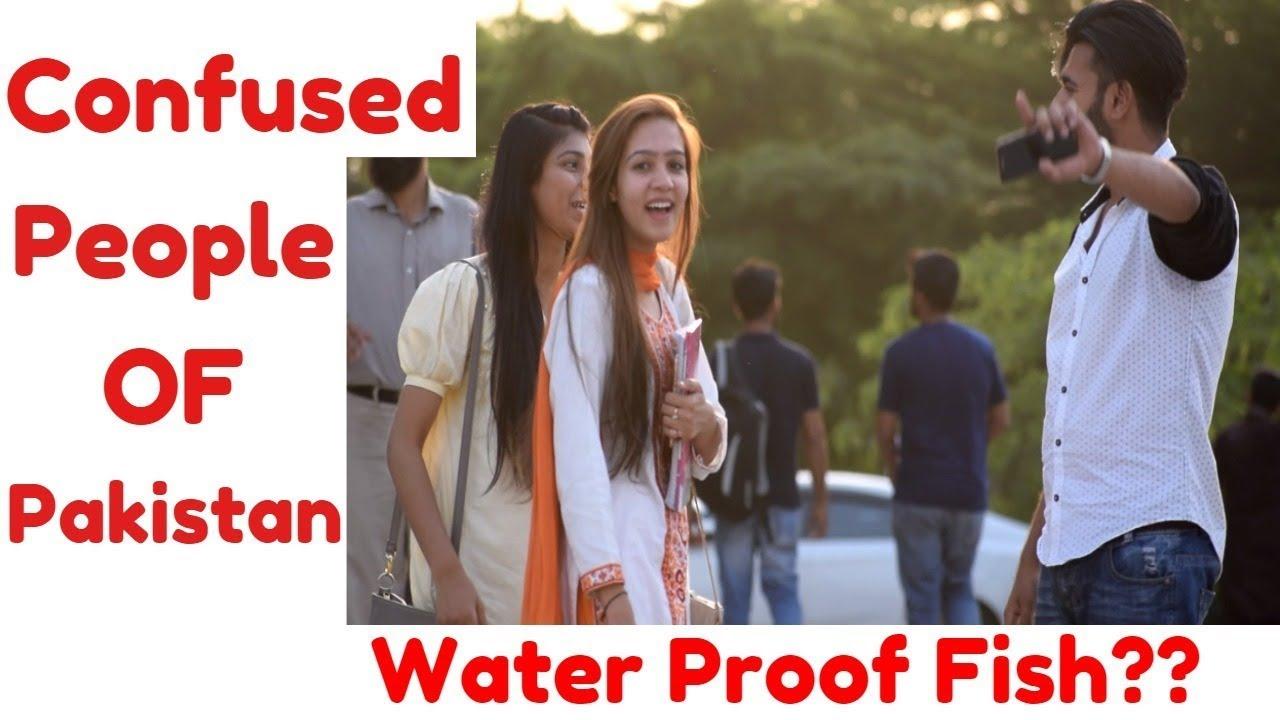 water proof fish confused people of pakistan uol haris awan