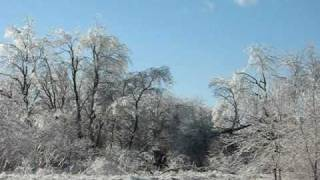 """""""Oh wow"""" the ice on the trees behind the motel where he stayed the first night of the ice storm"""