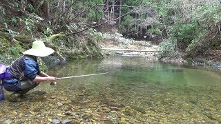 Japanese Mountain Stream Lure Fishing