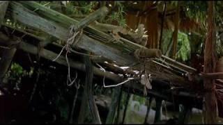 Bugs 2D (Trailer).avi