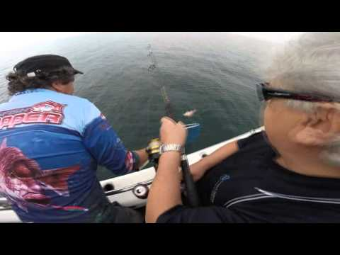 Melbourne Fishing Charters Fishing 2020 Pinkie Fishing