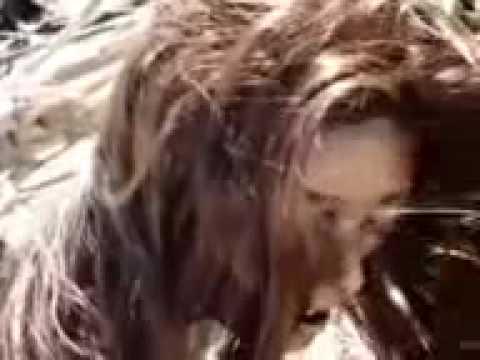 meerjungfrau gefunden