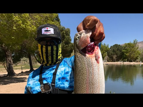 Hesperia Lakes Ca Fishing