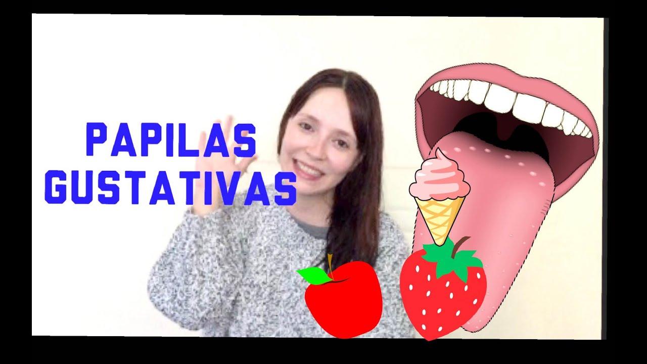 Papilas gustativas - YouTube