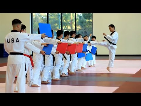 Amazing Taekwondo Training 2015