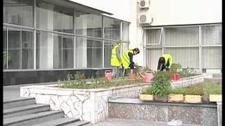 Посадка цветов(, 2012-06-14T11:27:14.000Z)