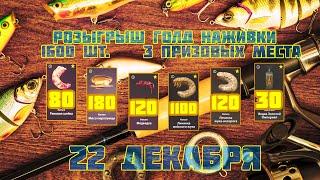 Трофеи на Тунгуске и Янтарке Общение Русская рыбалка 4 стрим рр4 стрим
