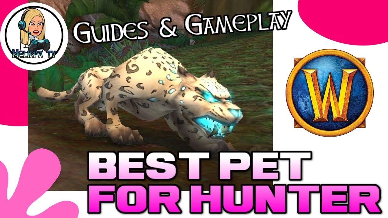 World Of Warcraft Best Pet For Hunter Guide Bfa Youtube