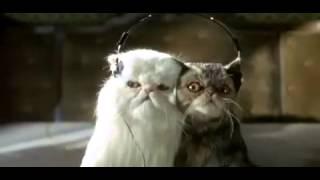 [RUS] Кошки против собак (2001) - Трейлер [Arenaholic]