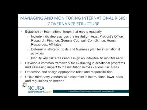 Managing and Monitoring International Risk * Governance Structure