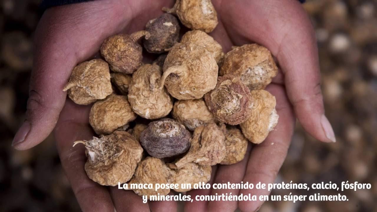 Productos naturales para adelgazar peruanos