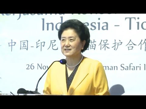 China's vice premier promotes use of science and technology in Indonesia