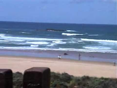 Surf Portugal.wmv