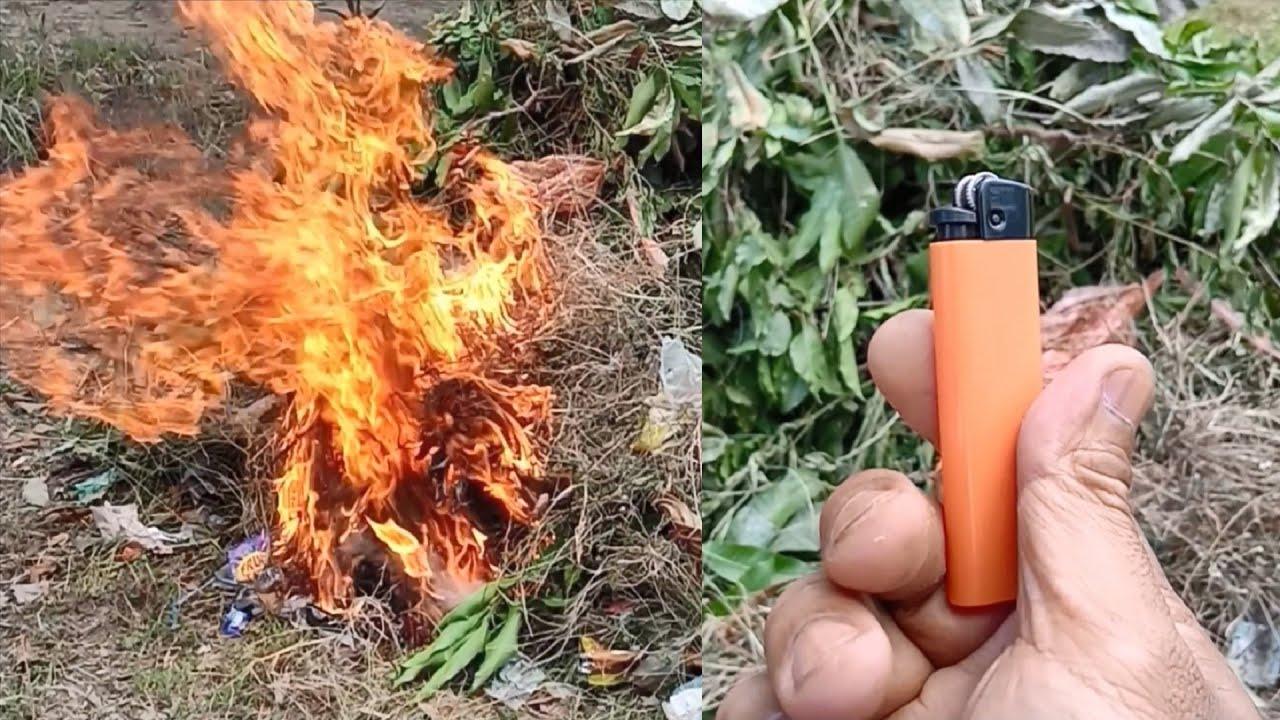 Tutorial Tata Cara Membakar Sampah Rumput dan Daun yang Masih Basah