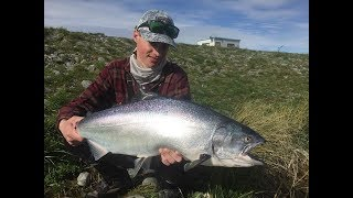 I Nearly Broke My Personal Best Salmon, Soft Plastic Fishing The Twizel Canals.
