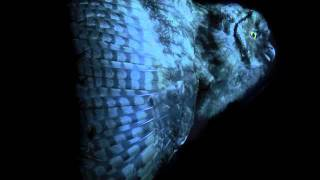 Mondkopf - The Song of Shadows (Rising Doom) - UOP